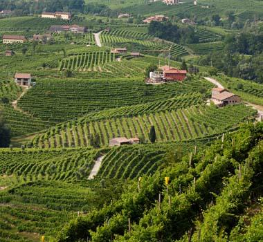 Tour Cortina
